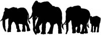 Herd of Elephants Silhouette