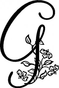 "Floral Illustrated Letter ""G"""