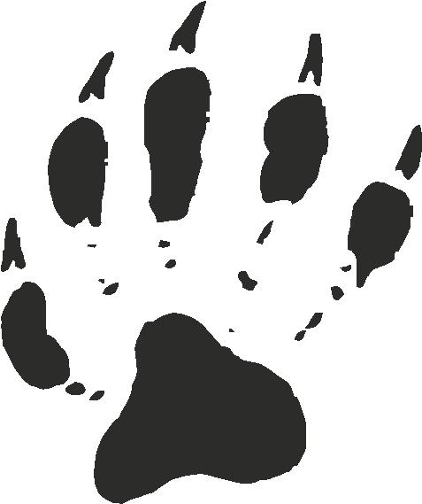 Raccoon Paw Print Tracks Decals And Stickers The Home